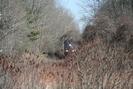 2006-04-09.8007.Flamborough.jpg