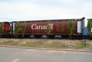 2006-06-04.1209.Dorion.jpg