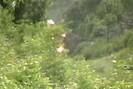 2006-06-04.1294.Belleville.mpg.jpg