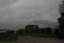 2006-09-24.4946.Guelph_Junction.jpg