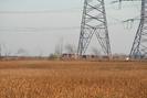2006-11-22.6243.Mansewood.jpg