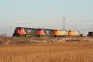 2006-11-22.6250.Mansewood.jpg