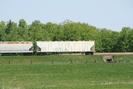 2007-05-19.3699.Killean.jpg