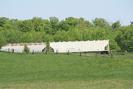 2007-05-19.3700.Killean.jpg