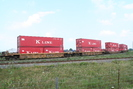 2007-07-28.6723.Vaughan.jpg