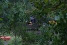 2007-08-25.7193.Owosso.jpg