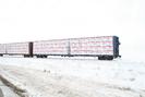 2008-02-18.0002.Guelph.jpg