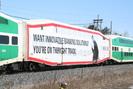 2008-03-22.0861.Burlington_West.jpg