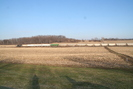 2009-02-17.5790.Lyons.jpg