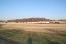 2009-02-17.5798.Lyons.jpg