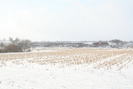 2009-02-22.5910.Breslau.jpg