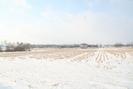 2009-02-22.5912.Breslau.jpg
