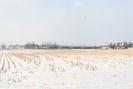 2009-02-22.5939.Breslau.jpg