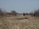 2009-04-25.0519.Corwhin.jpg