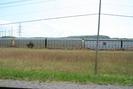 2009-05-08.6443.Selkirk.jpg