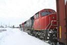 2009-12-30.8893.Hervey.jpg