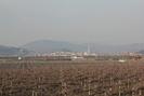 2012-01-01.1895.Montebello.jpg