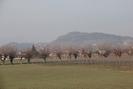 2012-01-01.1902.Altavilla.jpg