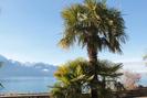 2012-01-03.2080.Montreux.jpg