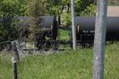 2013-05-25.4772.Newtonville.jpg
