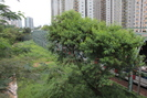 2013-07-17.6187.Hong_Kong.jpg