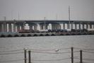 2020-01-01.8096.Galveston-TX.jpg