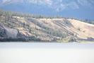 2020-08-08.0680.Jasper.jpg