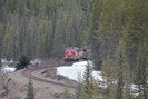 2021-04-02.2147.Banff-NP_AB.jpg