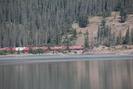 2021-07-26.1862.Jasper.jpg