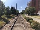 2021-08-21.5906.Edmonton.jpg