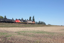 2021-09-13.4490.Edmonton.jpg